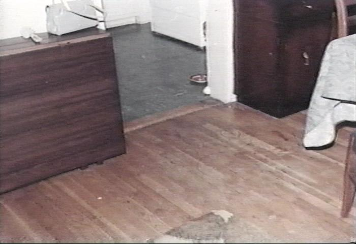Blood stains on dining room floor (areas circled by investigators barely visible)